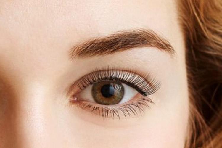 eyebrow tinting after photo