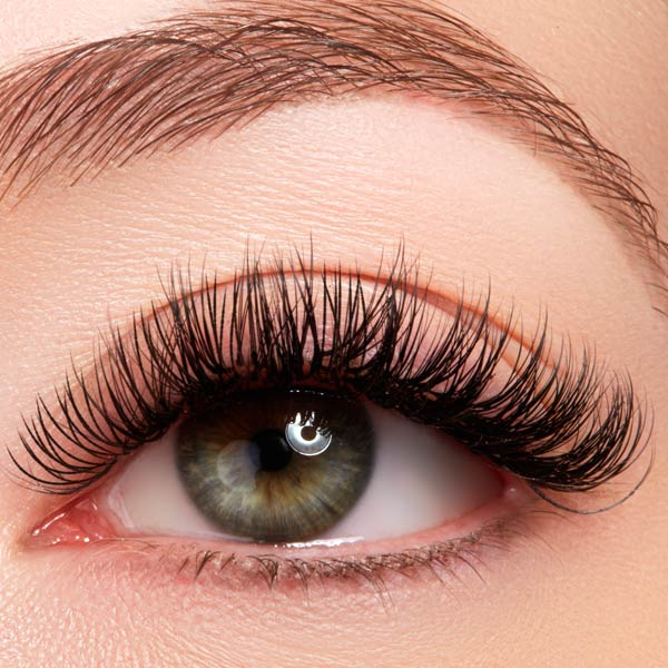 About | The Lash Lounge Dr. Phillips - Orlando