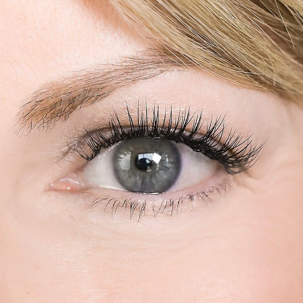 The Lash Lounge Raleigh ITB False Lashes Cleaning Tips