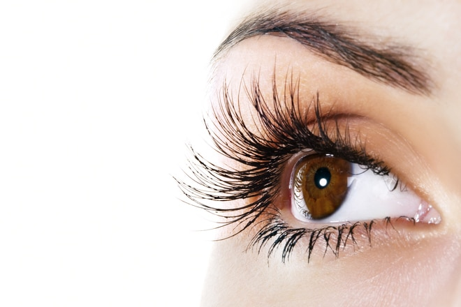 10 Facts About Lash Shedding